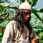 Inheemse man onderzoekt plant